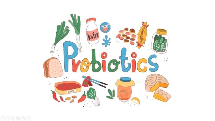 organic probiotics